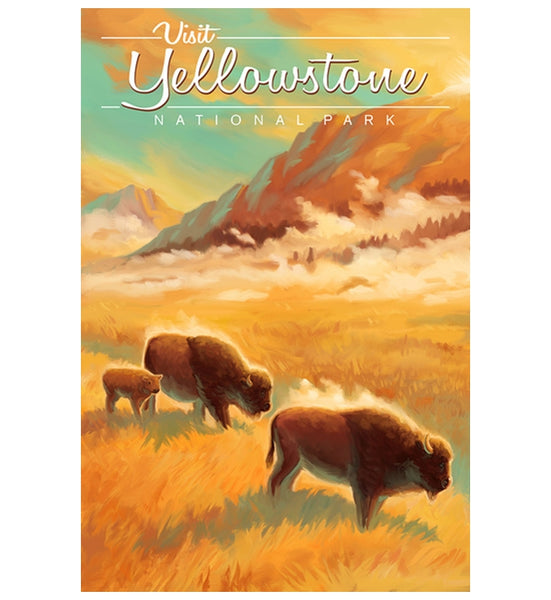 Yellowstone Bison Lantern Press Postcard