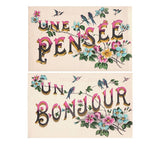 2 blank greetings UN PENSÉ and BONJOUR (A Thought and Hello) antique french postcards cartes postales