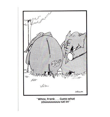 Elephant Gary Larson Far Side Comic Postcard