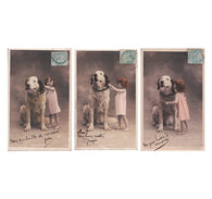 Set of 3 antique RPPC Girl and Big Dog French postcards