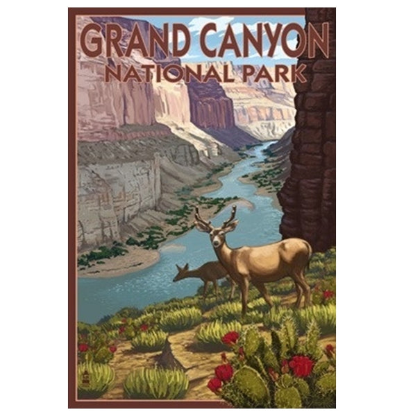 Grand Canyon Deer Lantern Press Postcard