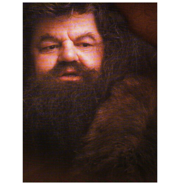 HP:  Hagrid Portrait Postcard