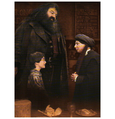 HP:  Harry, Hagrid and Professor Quirrell Postcard