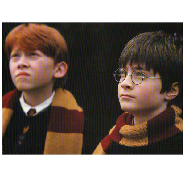 Harry Potter - MaxAndCoPost