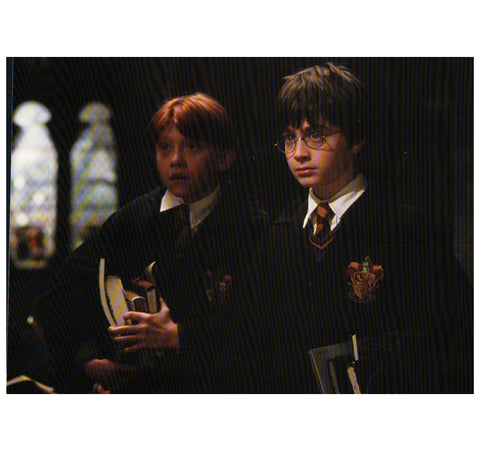 HP: Harry and Ron in Library Postcard