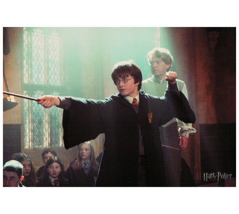 HP:  Harry and  Professor Guilderoy Lockhart Postcard