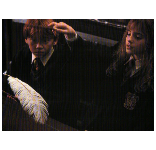 HP:  Ron and Hermione Levitating Feather Postcard