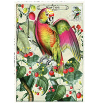 Glittery Tausendschoen Editions Parrot and Berries Postcard