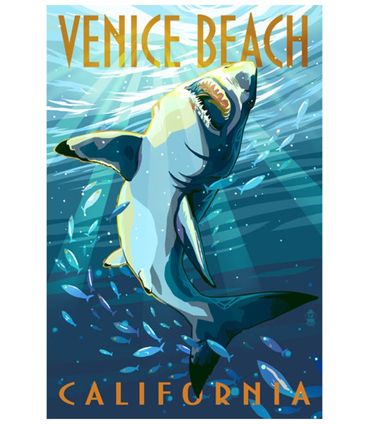 Venice Beach Shark Lantern Press Postcard