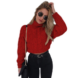Mooncity Turtleneck Crop Sweater