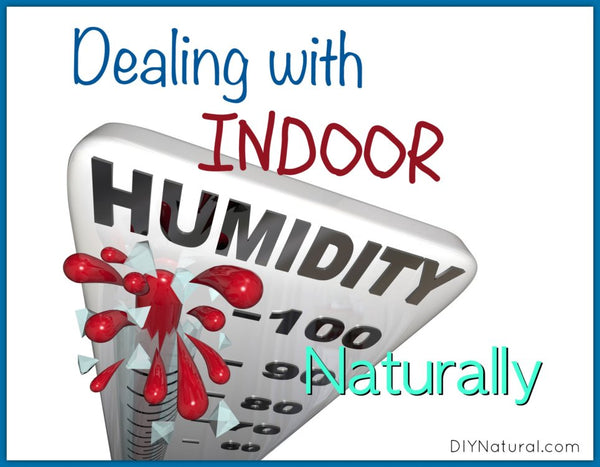 The Best Way to Control Indoor Humidity—and Your Energy Bills