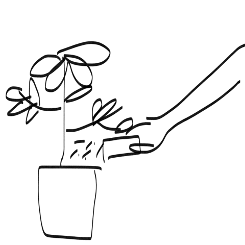 Playful illustration of someone holding a potted plant