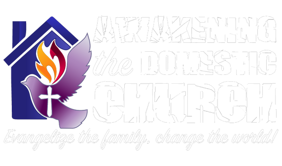 Awakening Domestic Church Series