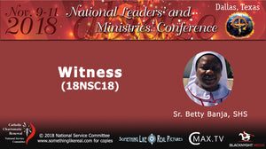 Nov 2018 NLMC : Witness (part 1 and part 2)