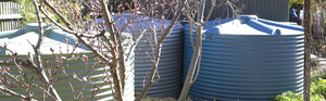Cleaning and Filtering your Tankwater, Post-Bushfire