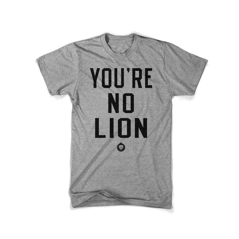 YOU'RE NO LION