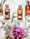 Home Fragrances – The Reasons Why They're Important