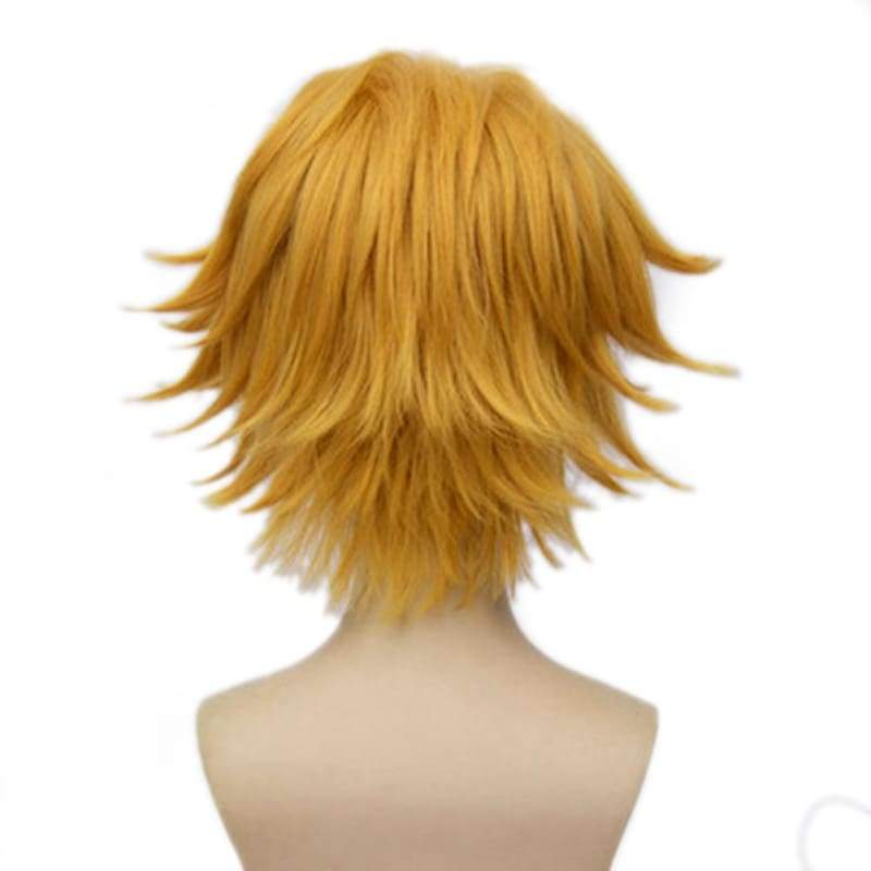 xcoser-de,Miraculous Ladybug Cat Noir Wig Short Straight Blonde Wig Cat Noir Cosplay Props,Wigs