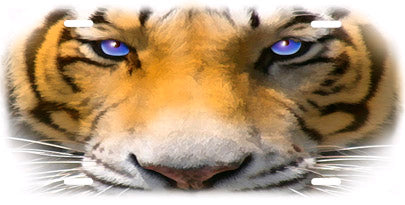 Tiger Face Auto Tag