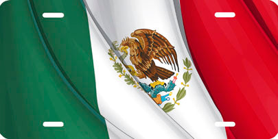 Mexican Flag Auto Tag