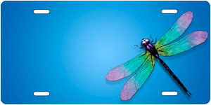 Dragonfly Auto Tag