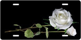 White Rose Auto Tag