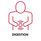 DIGESTION red