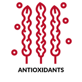 antioxidants RED