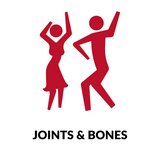 joints and bones red