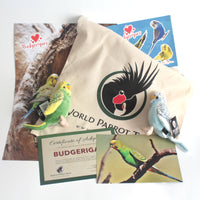 Budgerigar - World Parrot Trust