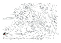 Free colouring page - Amazon Parrots - World Parrot Trust
