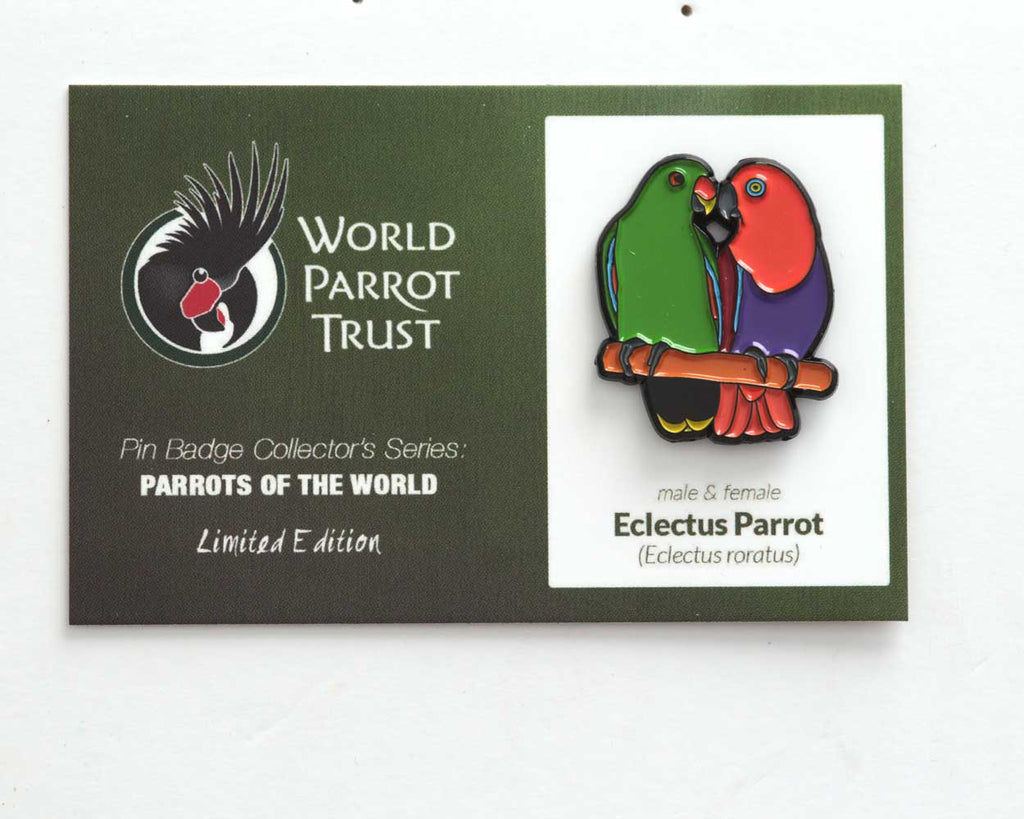 *NEW* Collectors Enamel Pin Badges - no 7. Eclectus Parrots - World Parrot Trust