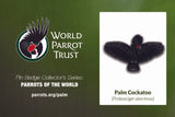 Collector's Enamel Pin Badges - no 13. Palm Cockatoo - World Parrot Trust