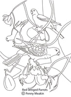 Free colouring page - Red-Winged Parrots - World Parrot Trust