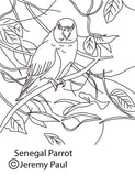 Free colouring page - Senegal Parrot - World Parrot Trust