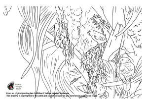 Free colouring page - Yellow headed Amazons - World Parrot Trust