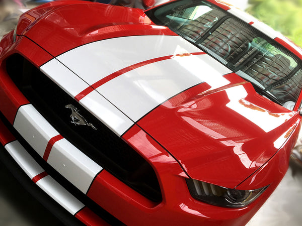 We Love Ford Mustangs