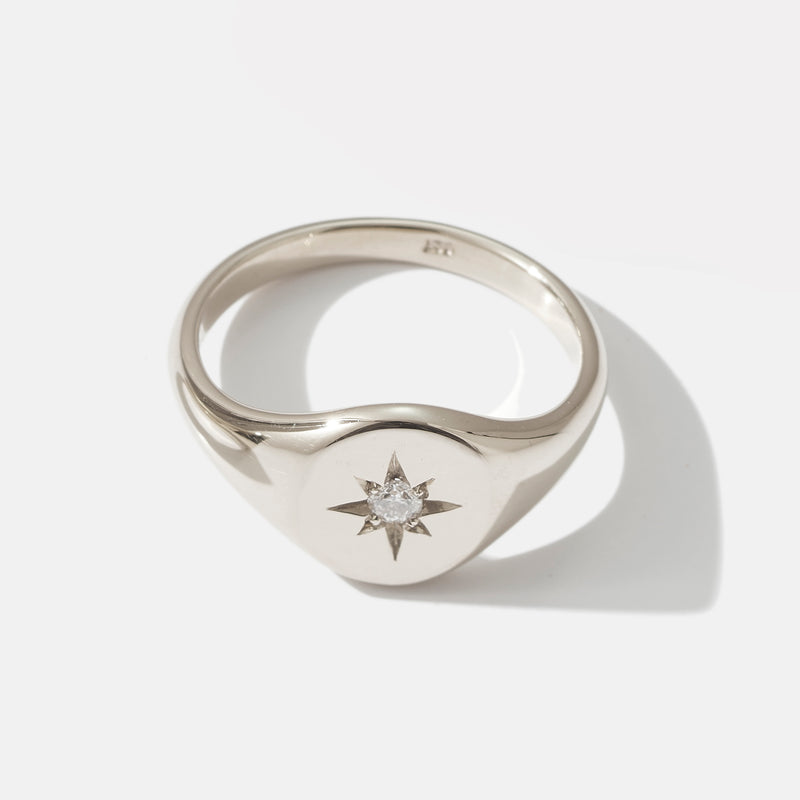 Small Diamond Signet Ring in White Gold