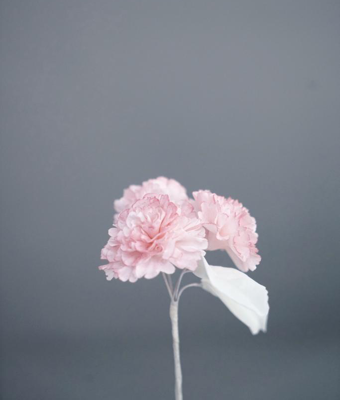 Mother's Day Workshop 2019 - Carnations