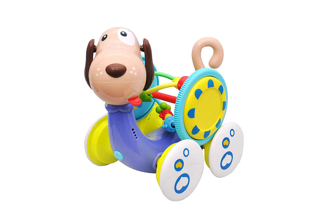 Toyshine Musical Dog Educational Interactive Learning Features Battery Operated Toy Durable Build