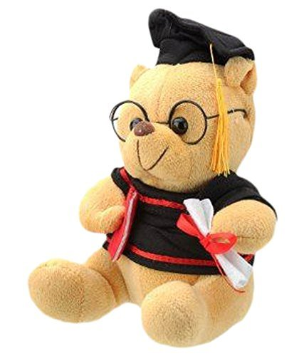 Sunshine Scholar Teddy Toy (Small)