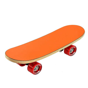 Toyshine Anti-Skid Skateboard with High Speed Bearings, Suitable for Kids (SSTP)
