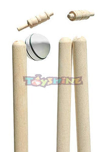 Toyshine 3pc Heavy Quality Wooden Wickets Cricket Stumps with 2 Bails (White) (SSTP)