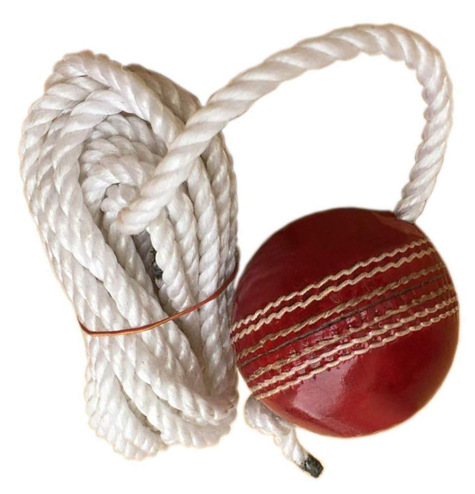 Toyshine Cricket Hanging Ball for Shot Practice in (Leather) (SSTP)