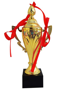 Toyshine Trophy for Winner Appreciation Event awards, Teachers, Students Offices,9.5 inch{Pack of 6} (SSTP)