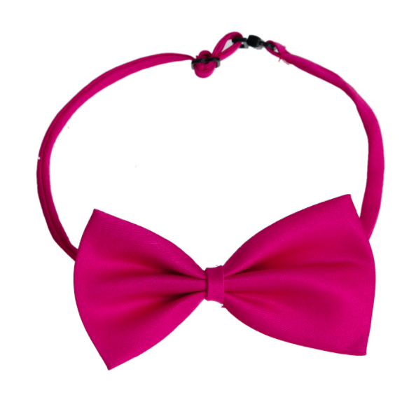 Mesmerizing Pink Polyester Bowtie