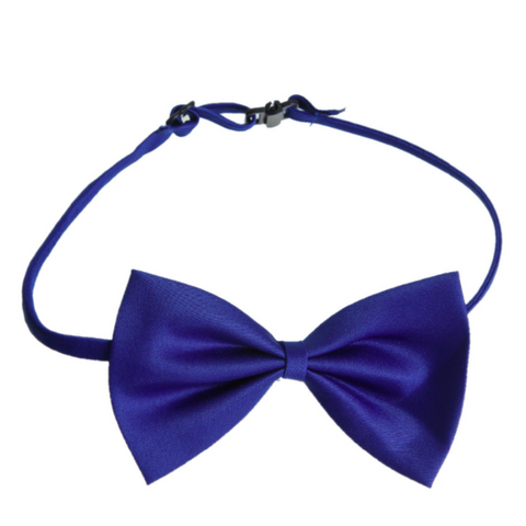 Electric Blue Polyester Bowtie