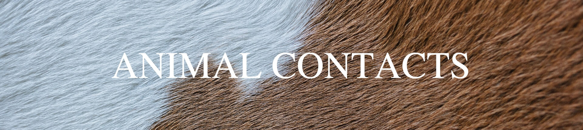 Animal Contacts