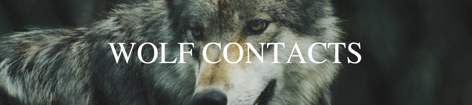Wolf Contacts