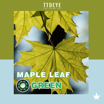 TTDeye Maple Leaf Green Colored Contact Lenses